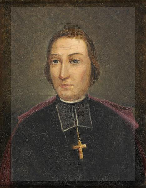 Monseigneur henri de solages 1850